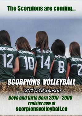 SCORPIONS VOLLEYBALL